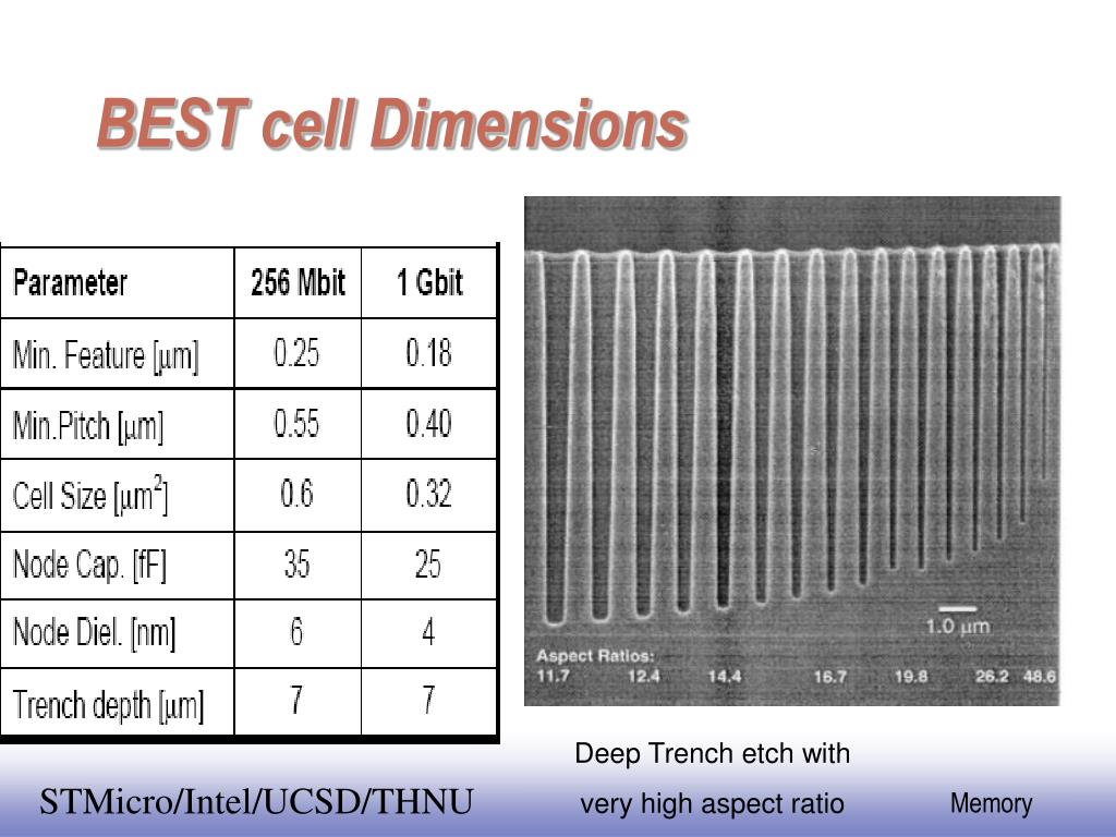 BEST cell Dimensions