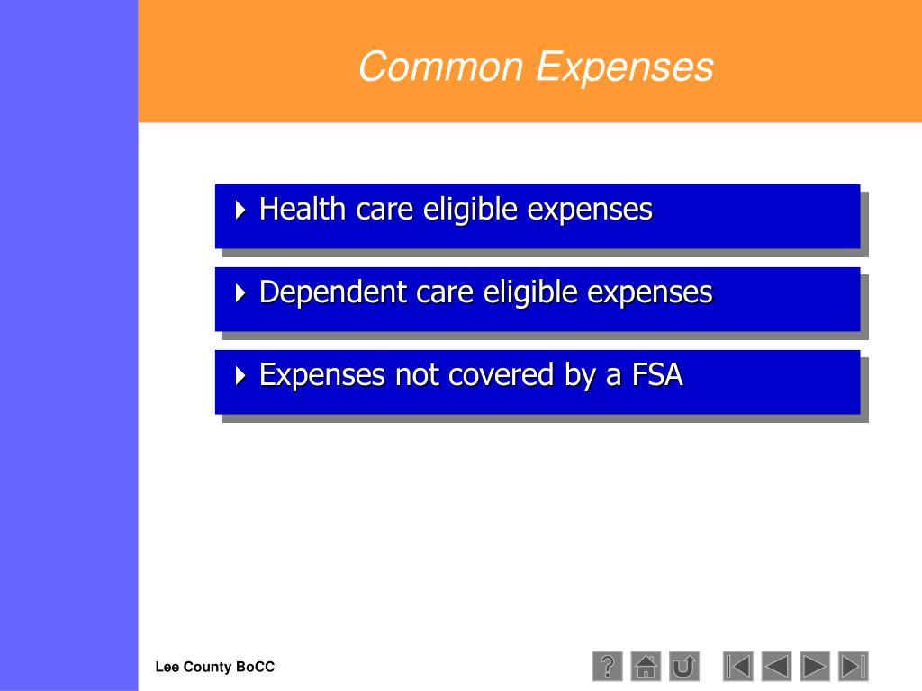 Common Expenses