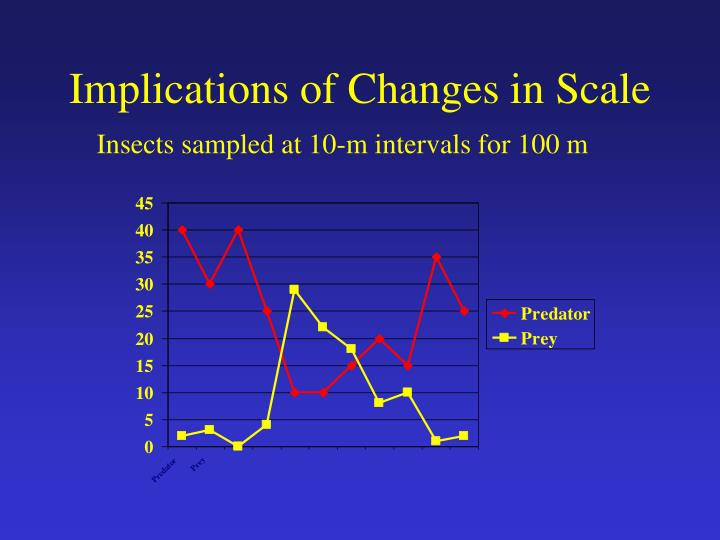 Implications of Changes in Scale