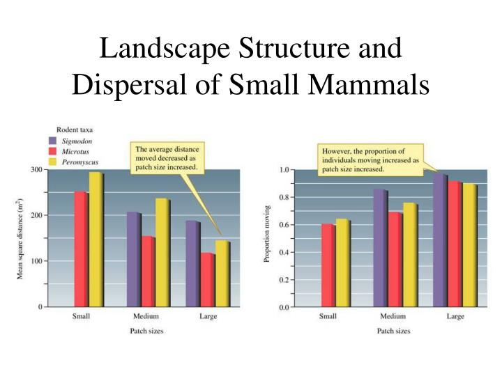 Landscape Structure and Dispersal of Small Mammals