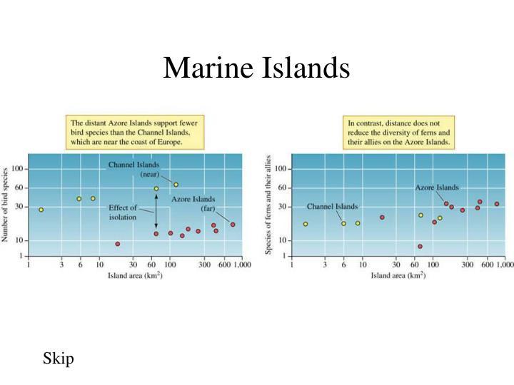 Marine Islands