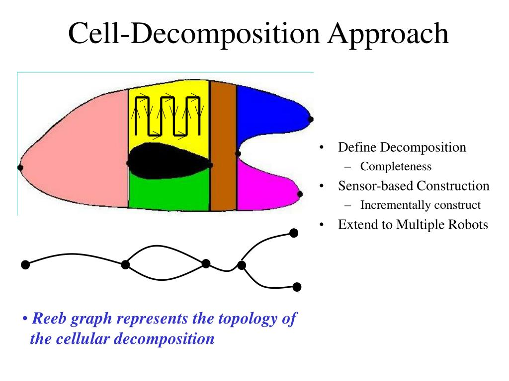 Reeb graph represents the topology of