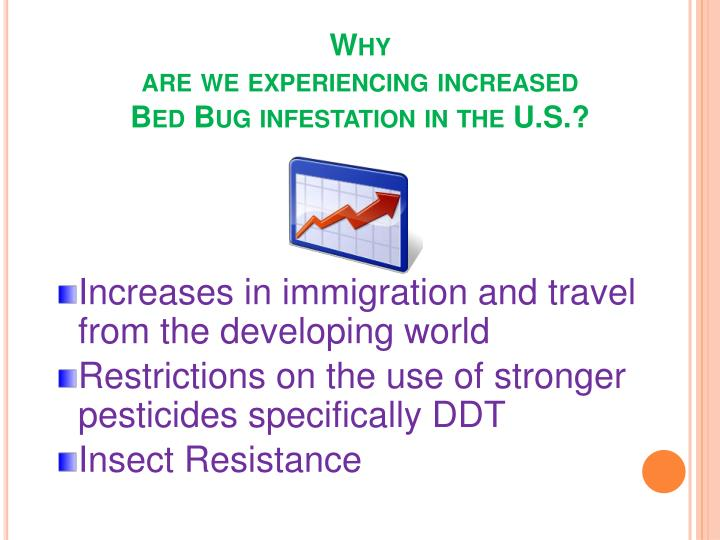 Bed Bug Infestation Icd