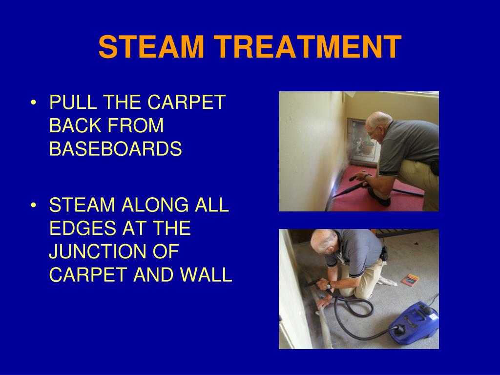 STEAM TREATMENT