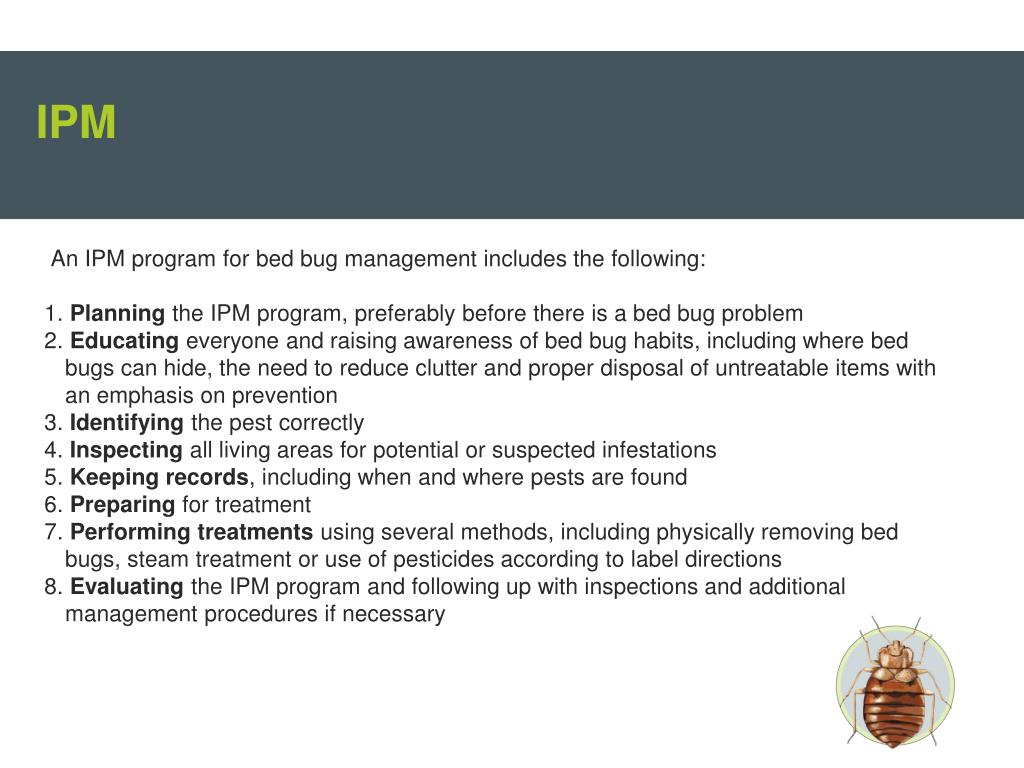 How To Treat Records For Bed Bugs
