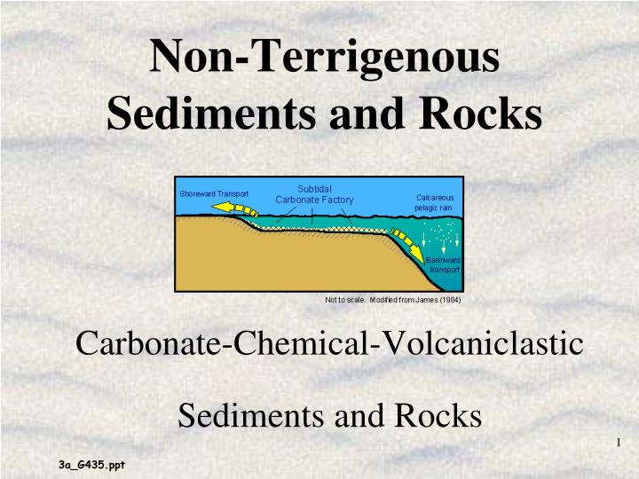 Non terrigenous sediments and rocks l.jpg