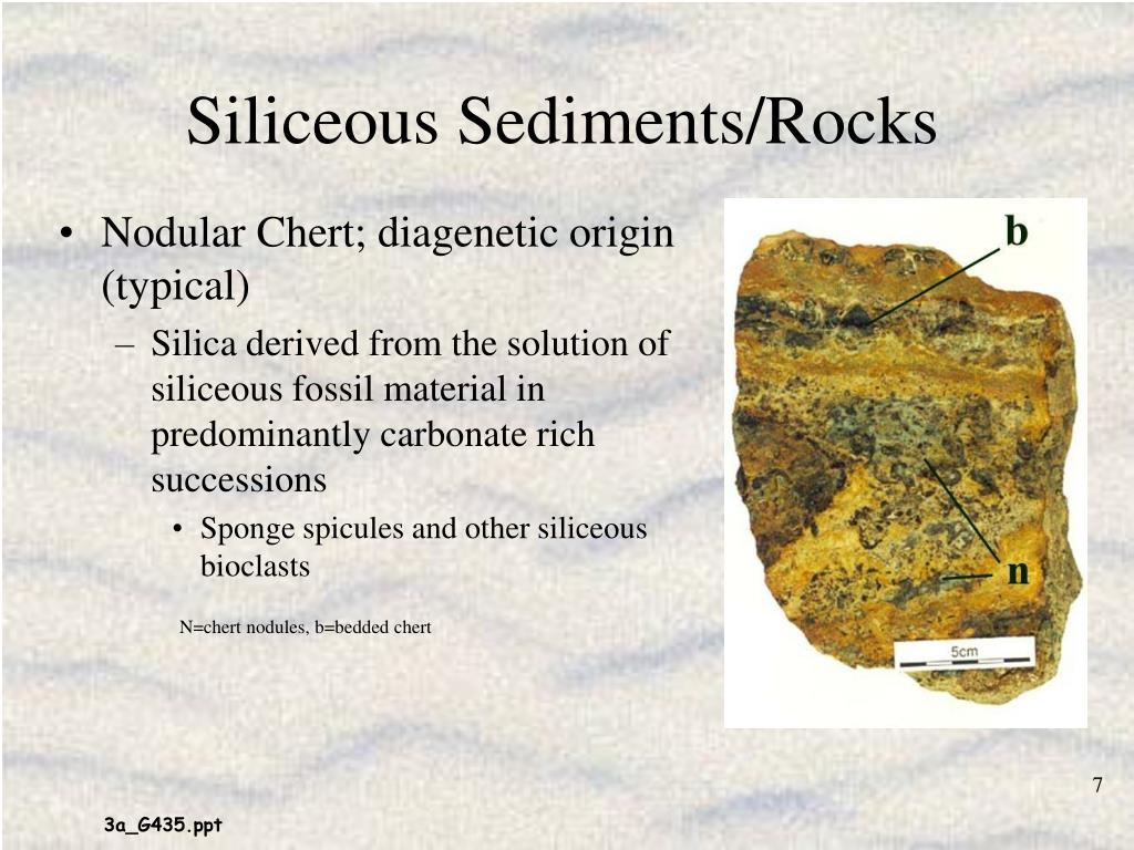 Siliceous Sediments/Rocks