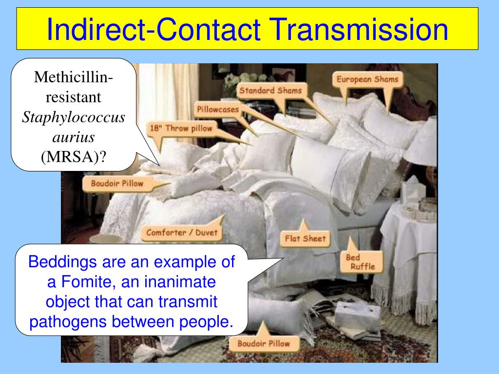Indirect-Contact Transmission