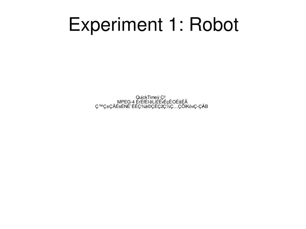 Experiment 1: Robot