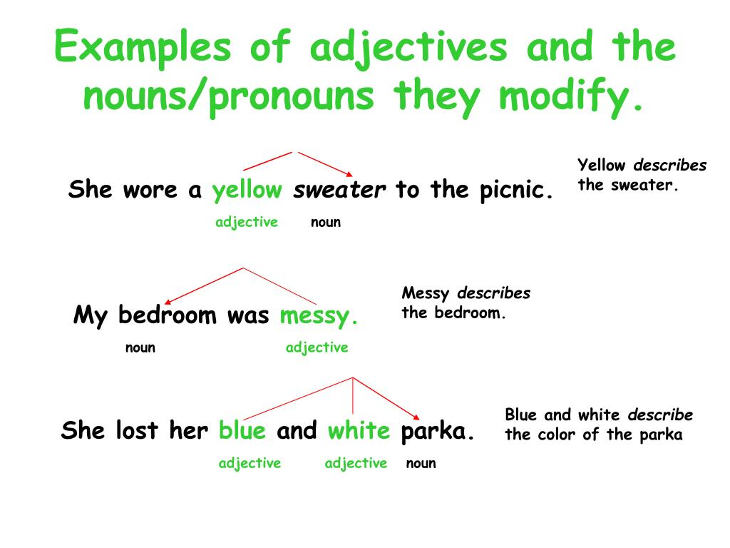 Examples of adjectives and the nouns/pronouns they modify.