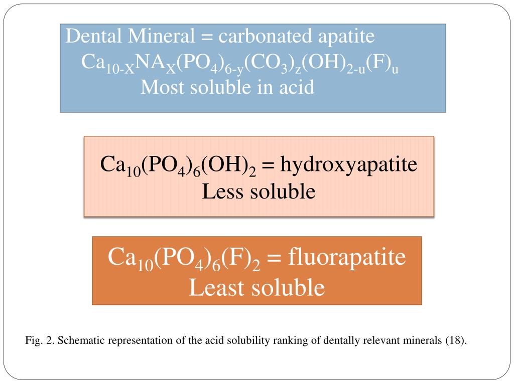 Dental Mineral = carbonated apatite