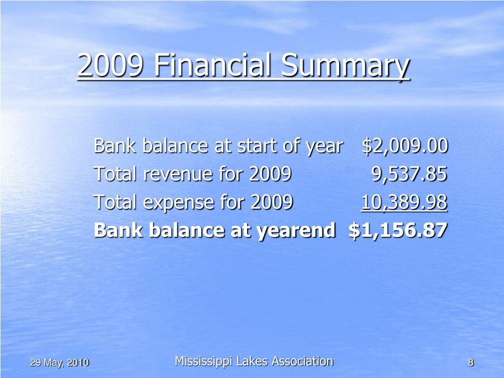 2009 Financial Summary