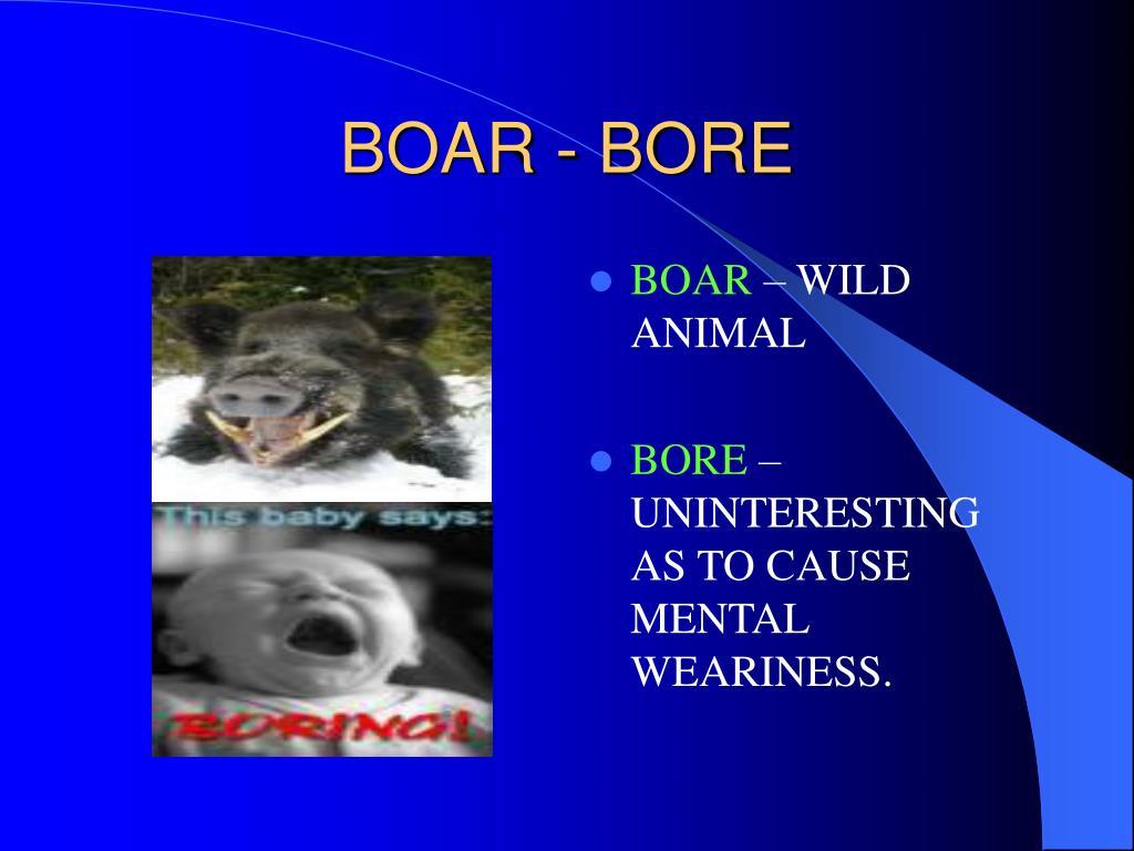 BOAR - BORE