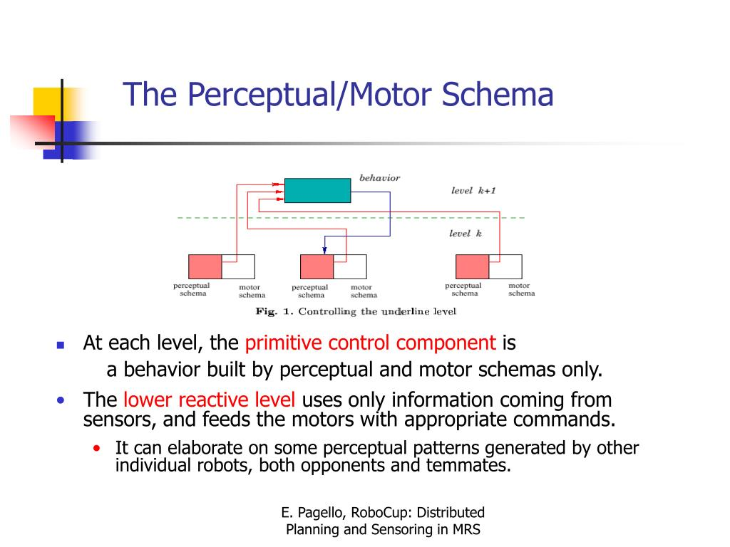 The Perceptual/Motor Schema