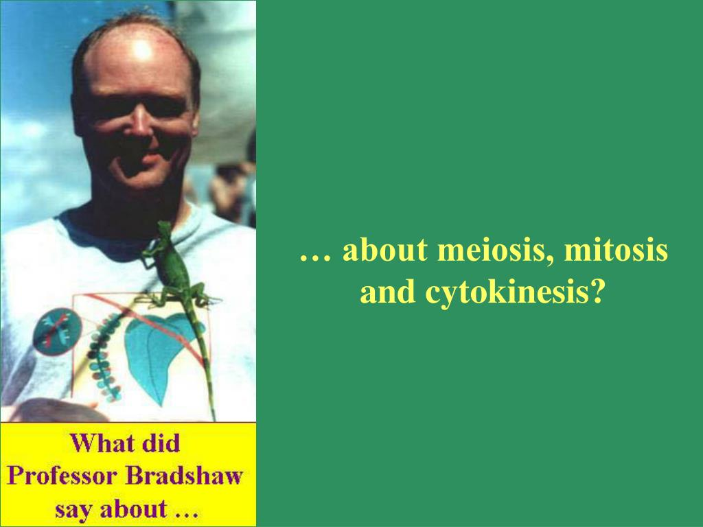 … about meiosis, mitosis and cytokinesis?