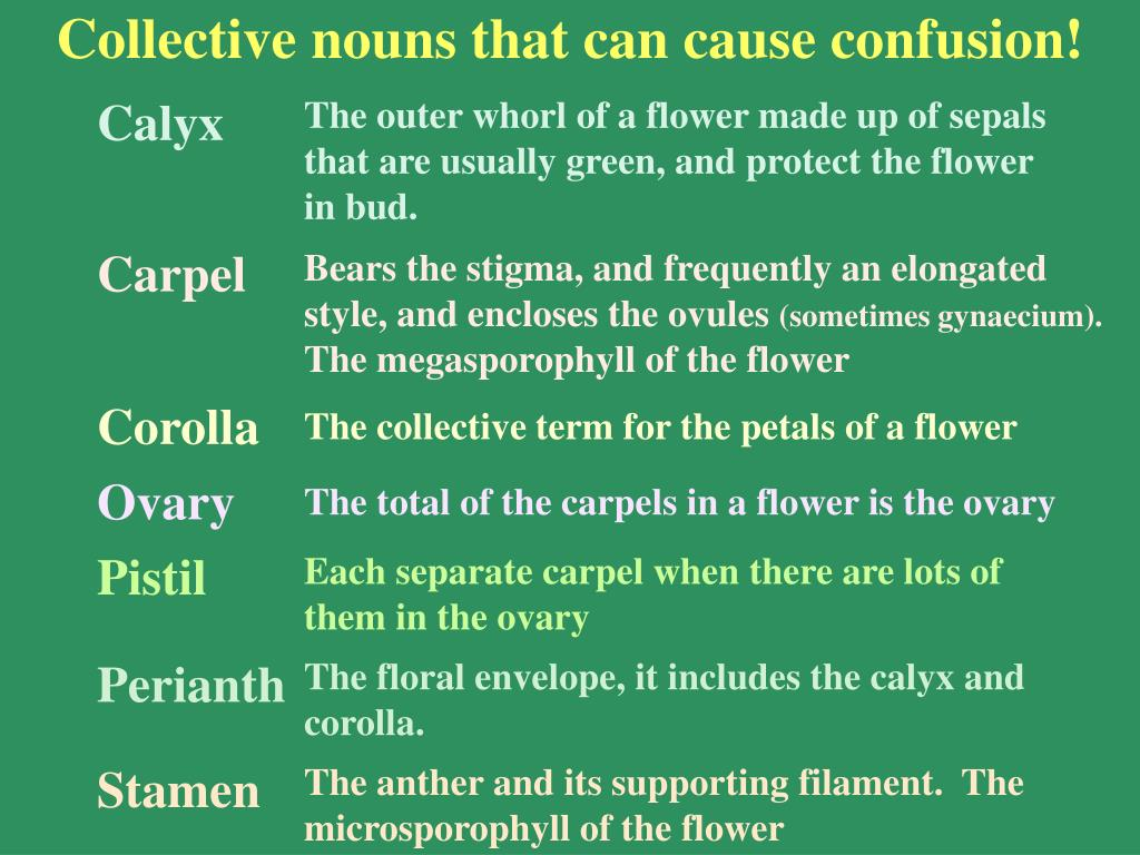 Collective nouns that can cause confusion!