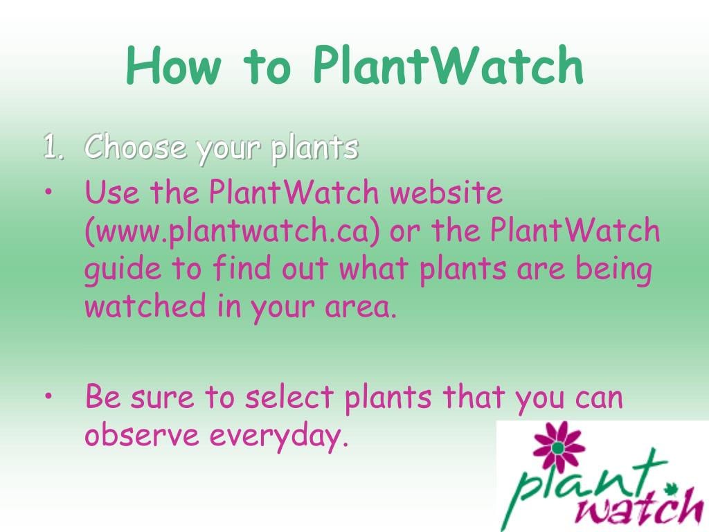 How to PlantWatch