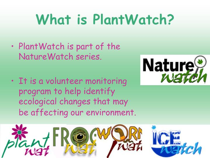 What is plantwatch