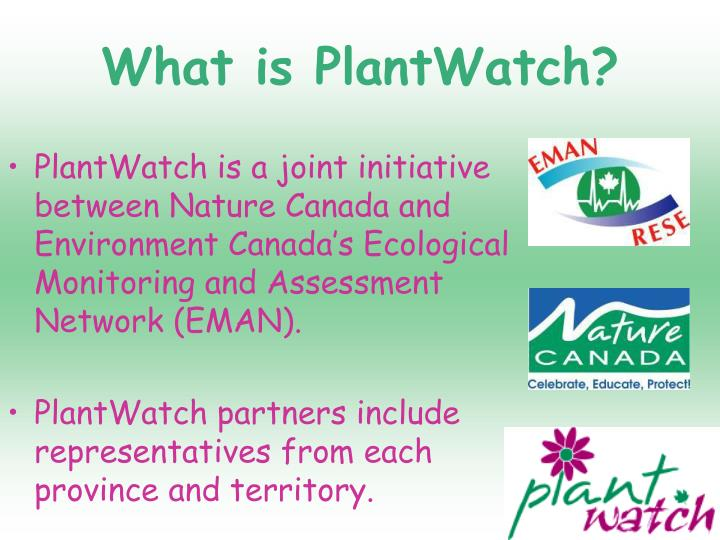 What is plantwatch3