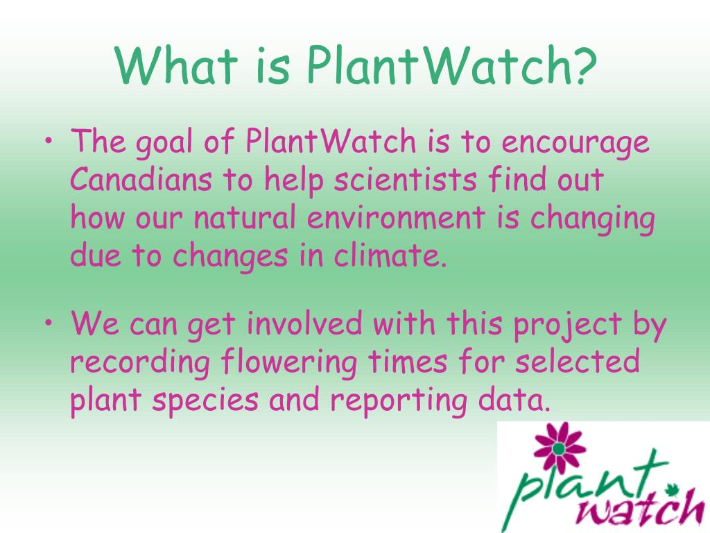 What is PlantWatch?