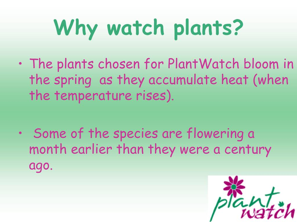 Why watch plants?