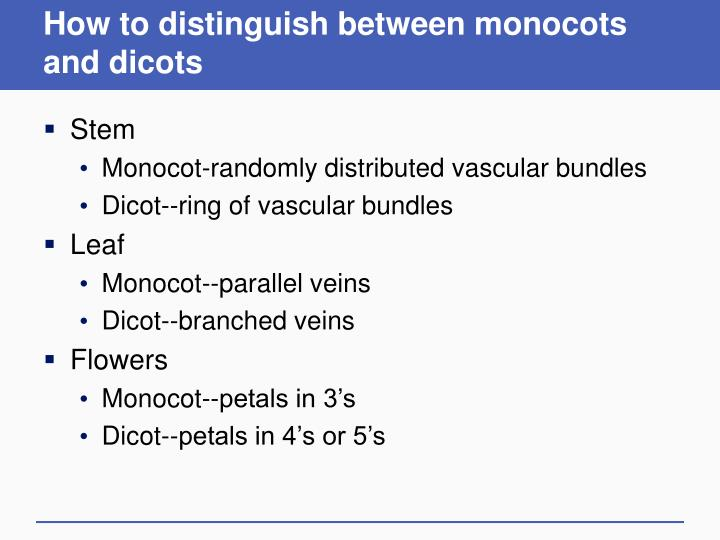How to distinguish between monocots and dicots