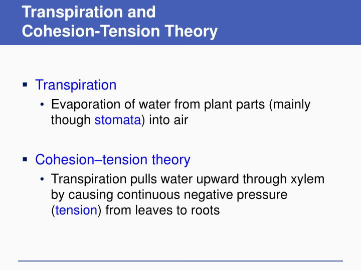 Transpiration and