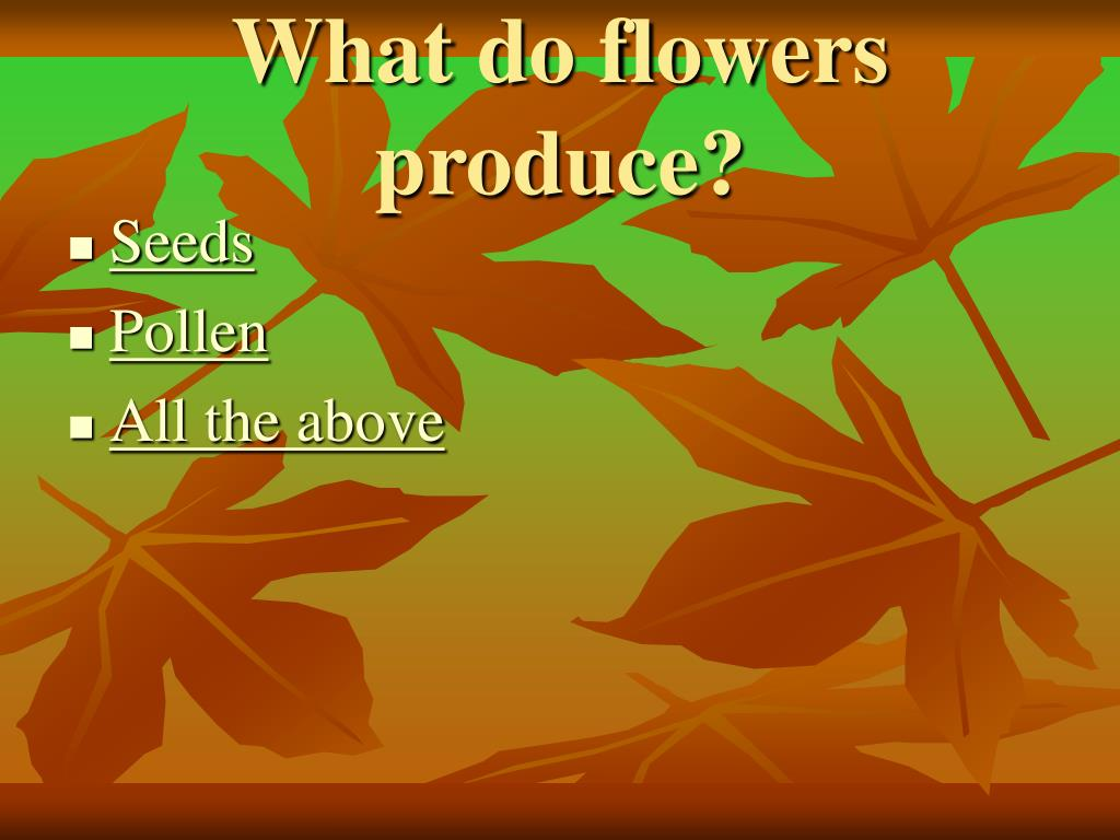 What do flowers produce?