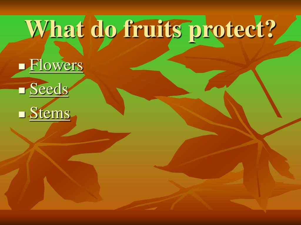 What do fruits protect?