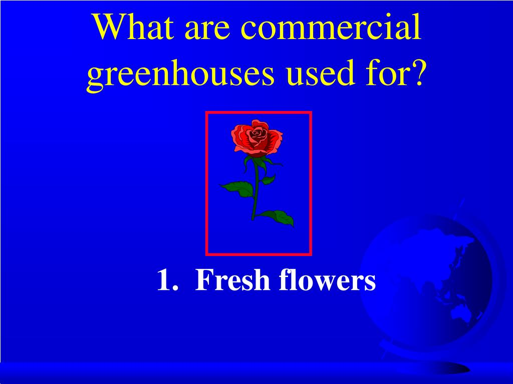 What are commercial greenhouses used for?