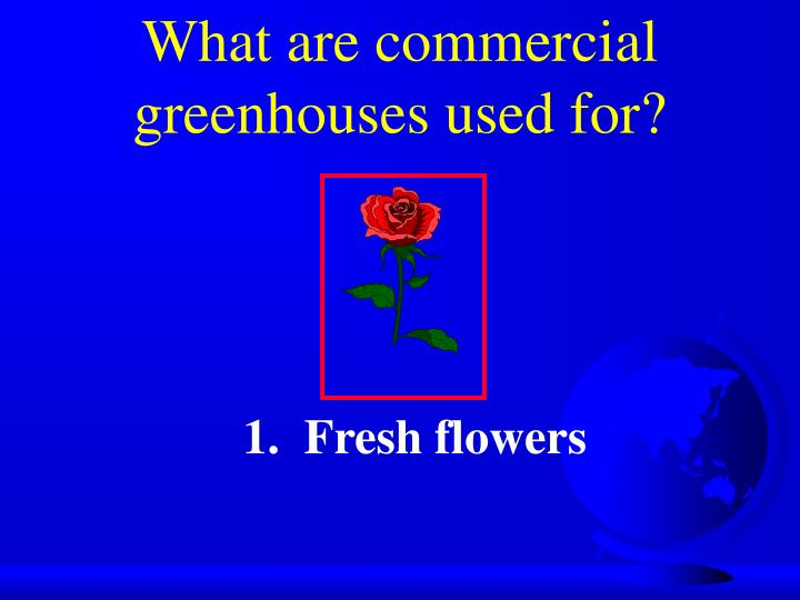 What are commercial greenhouses used for