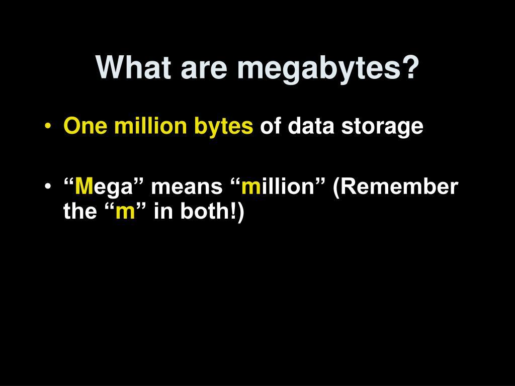 What are megabytes?