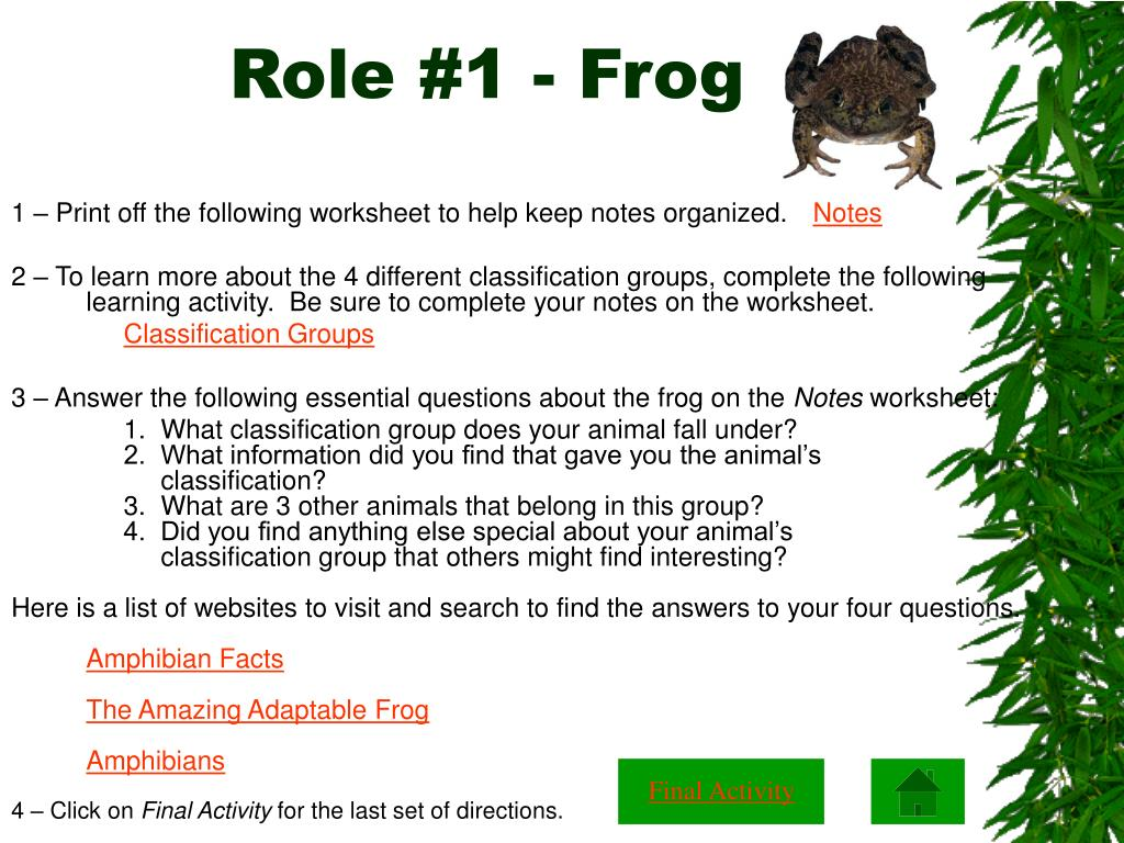 Role #1 - Frog