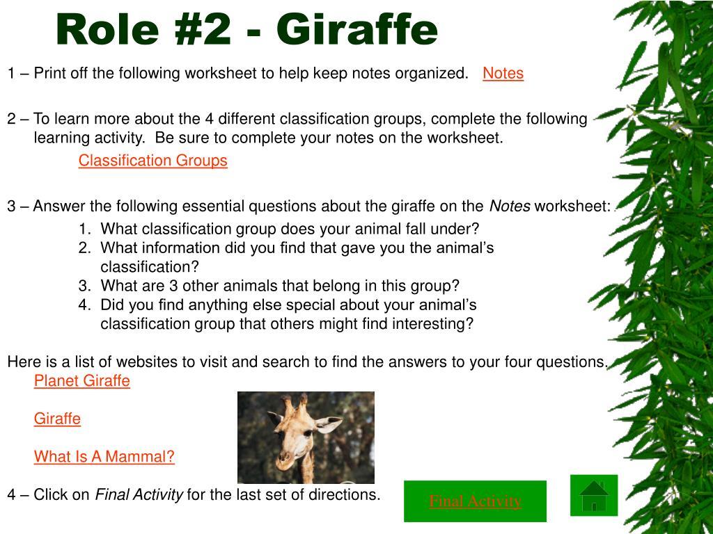 Role #2 - Giraffe