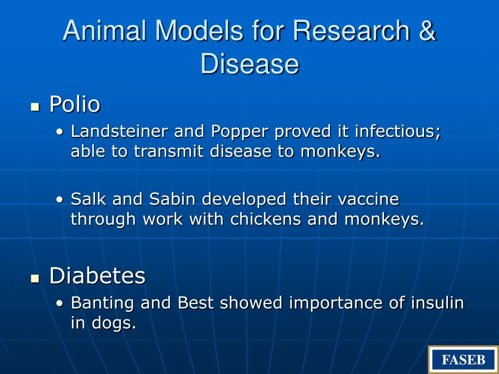 Animal Models for Research & Disease