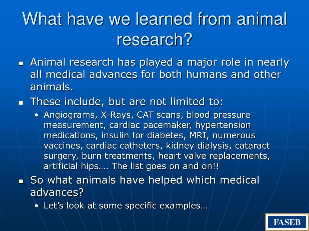 What have we learned from animal research?