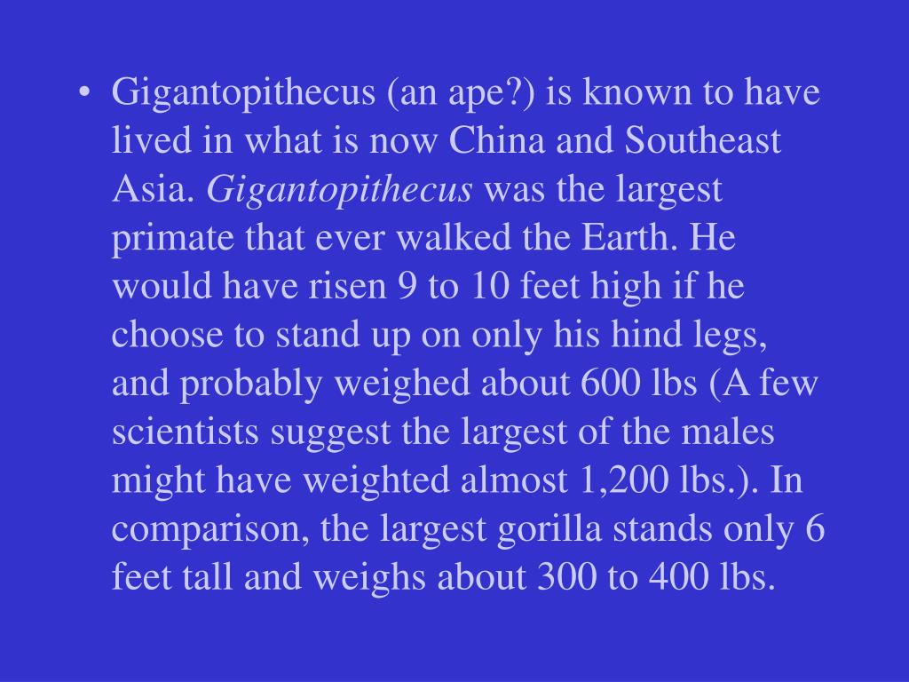 Gigantopithecus (an ape?) is known to have lived in what is now China and Southeast Asia.