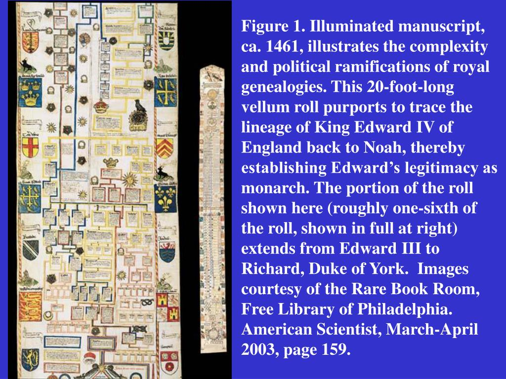 Figure 1. Illuminated manuscript, ca. 1461, illustrates the complexity and political ramifications of royal genealogies. This 20-foot-long vellum roll purports to trace the lineage of King Edward IV of England back to Noah, thereby establishing Edward's legitimacy as monarch. The portion of the roll shown here (roughly one-sixth of the roll, shown in full at right) extends from Edward III to Richard, Duke of York.  Images courtesy of the Rare Book Room, Free Library of Philadelphia.   American Scientist, March-April 2003, page 159.