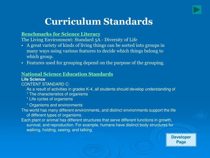 Curriculum Standards