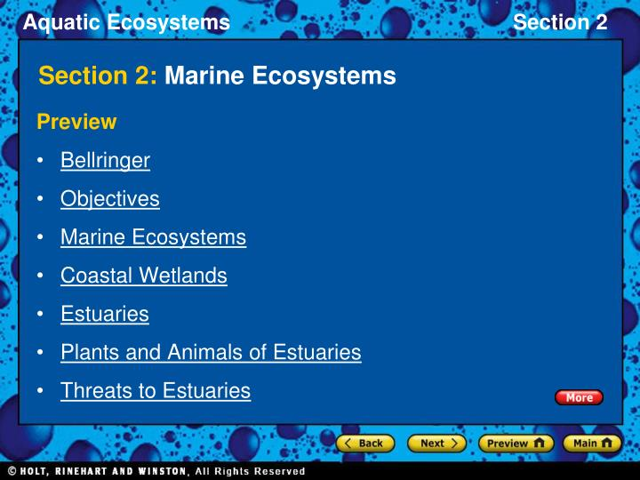 Section 2 marine ecosystems