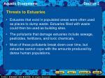 threats to estuaries