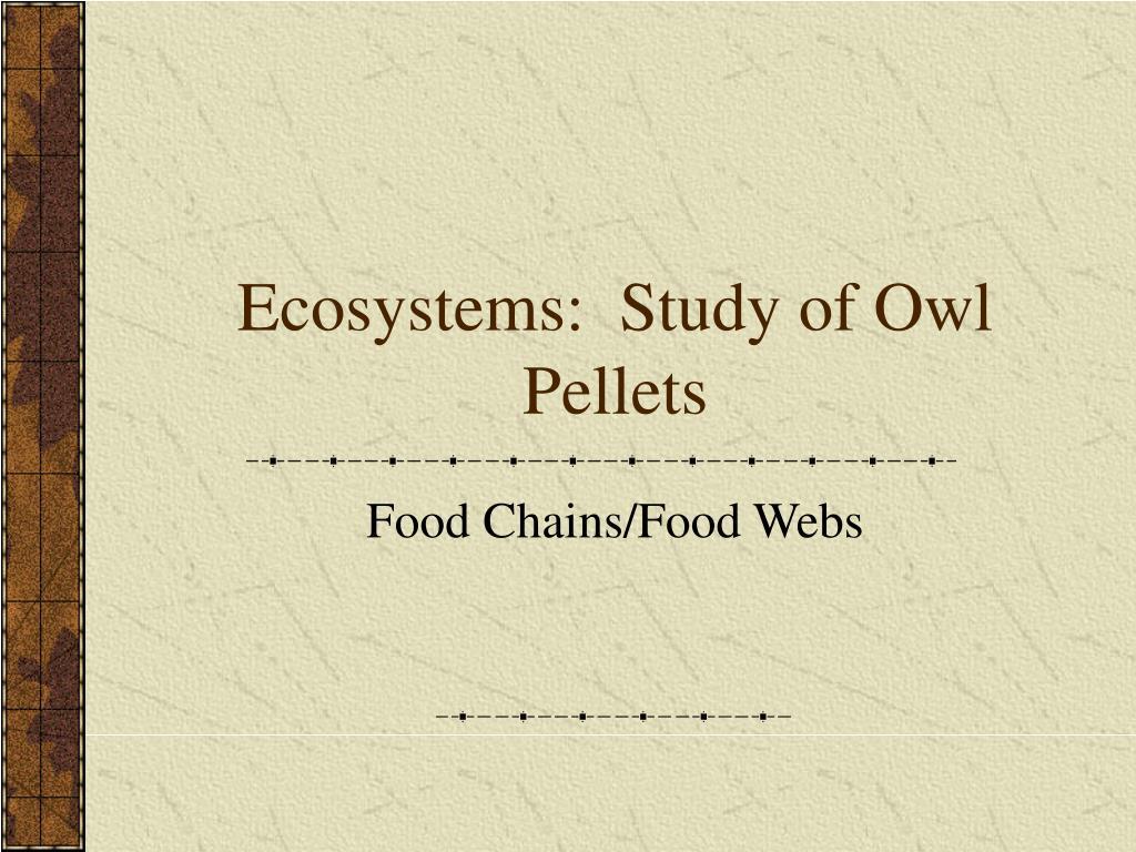 Ecosystems:  Study of Owl Pellets