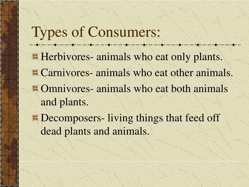 Types of Consumers: