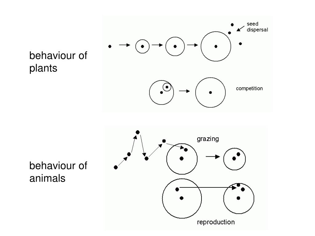 behaviour of plants