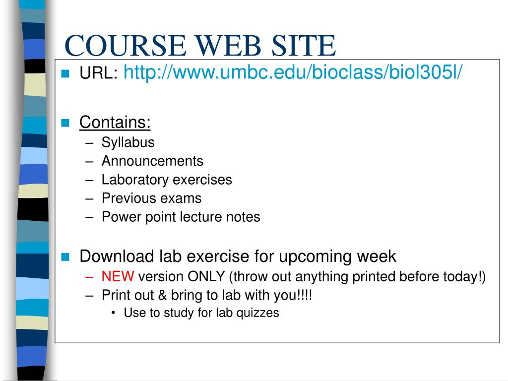 COURSE WEB SITE