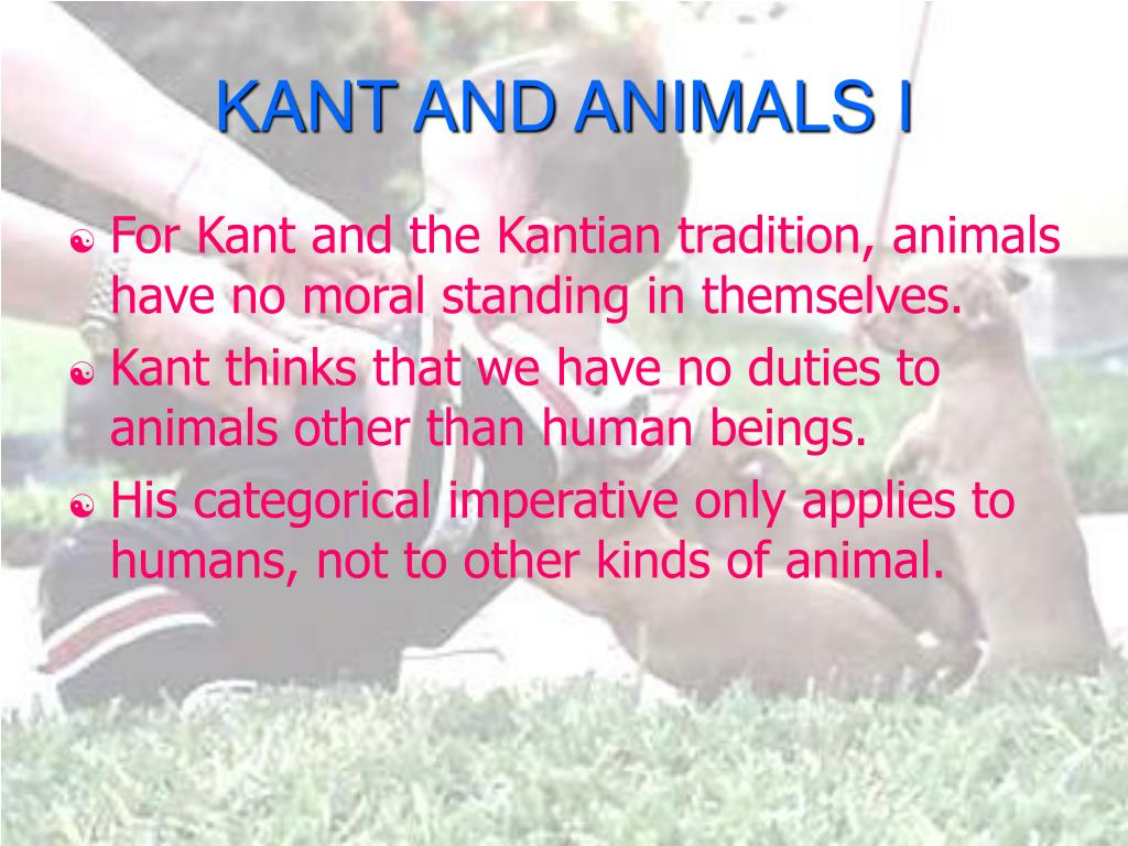 KANT AND ANIMALS I