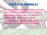 kant and animals i