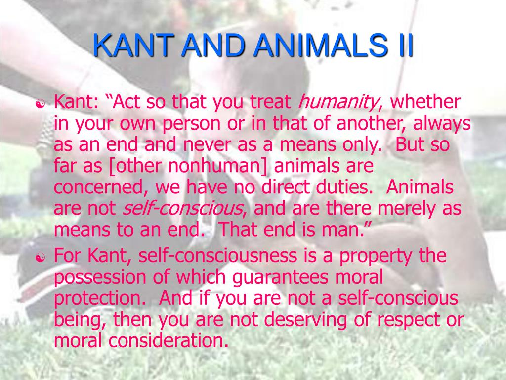 KANT AND ANIMALS II