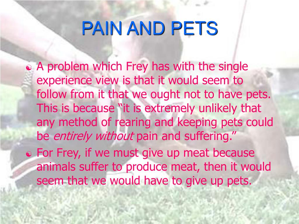 PAIN AND PETS