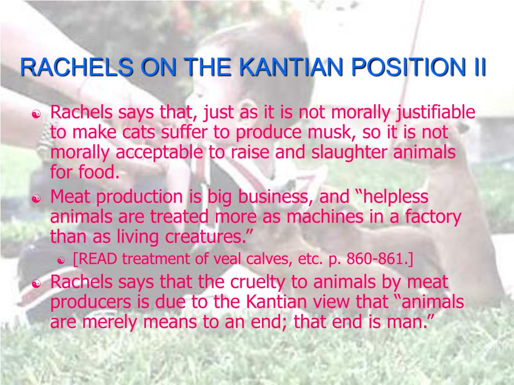 RACHELS ON THE KANTIAN POSITION II